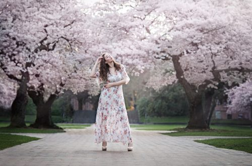 Seattle Cherry Blossoms | UW Quad Photo Session